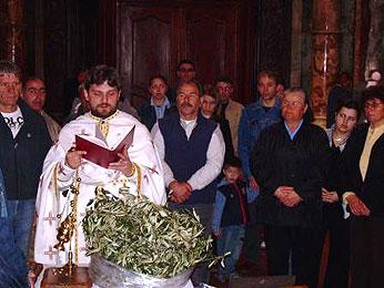 http://www.mpc.org.mk/_images/Aktuelnosti/cvetnici_280420062.jpg